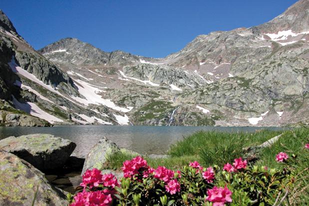 BERGPANORAMA am Lago Valscura.